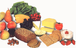 pr115a Ernährungsberatung